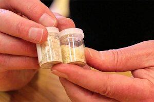 Buy MDMA powder online UK